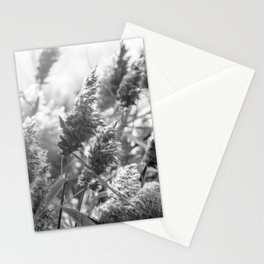 Le vent Stationery Cards
