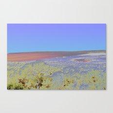 Chromascape 5: Formentera Canvas Print