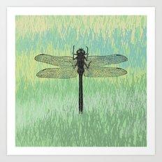 Dragonfly ~ The Summer Series Art Print