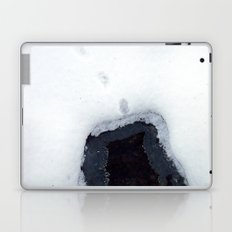 Snow 8 Laptop & iPad Skin