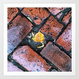 Brick Beauty Art Print