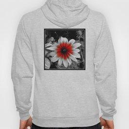 Flower | Flowers | Red Stroke Gaillardia | Red and White Flower | Nadia Bonello Hoody