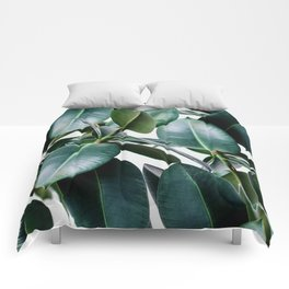 Tropical Elastica Comforters