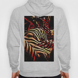 1206s-AK Abstract Striped Nude Rendered in Red Yellow and Gold Hoody