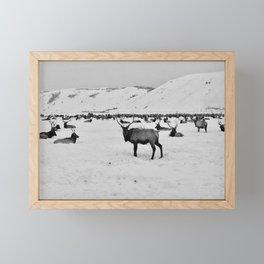 The Elk Framed Mini Art Print