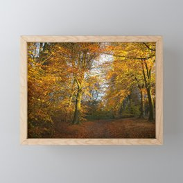 Forest Walk With Dazzling Autumn Colours Framed Mini Art Print