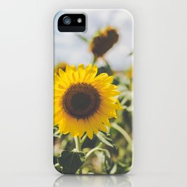 Allora | Sunflowers iPhone Case