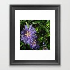 flower nature# ########### Framed Art Print