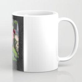 Pink Roses in Anzures 6 Blank P4F0 Coffee Mug