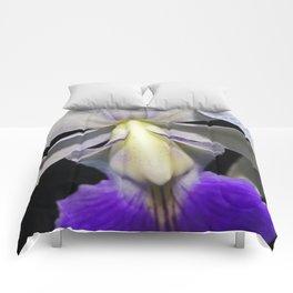 Cattleya Orchid Comforters