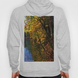 Color Explotion Hoody