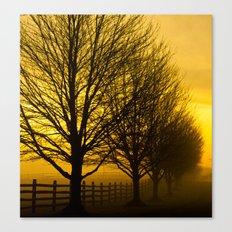 Morning Mist Canvas Print