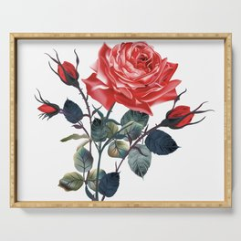 Beautiful vector realistic rose in vintage antique high detailed style Serving Tray