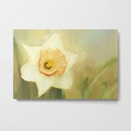 Spring Daffodil Metal Print