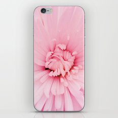 Chrysanthemum heart iPhone & iPod Skin