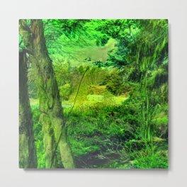 Temperate Jungle Home Metal Print