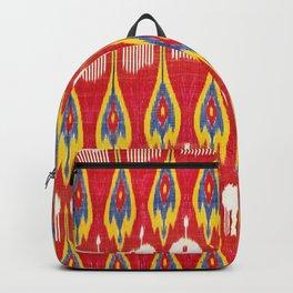 Silk Ikat Parda Uzbekistan Print Backpack