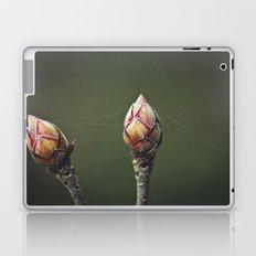 Frozen in Time Laptop & iPad Skin