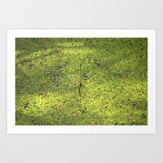 On the surface Art Print