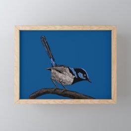Fairy wren drawing Framed Mini Art Print