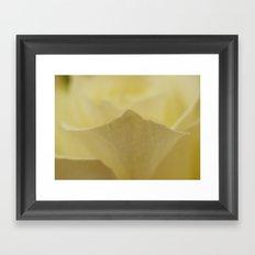 Yellow Roses (25) Framed Art Print