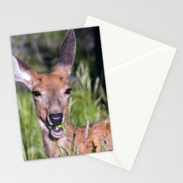Deer With Regal Ears & Shimmering Nose Munching Grass Stationery Cards