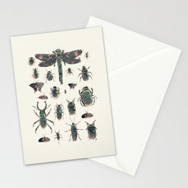 Collection of Insects Stationery Cards