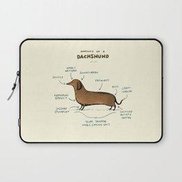Anatomy of a Dachshund Laptop Sleeve