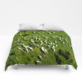 Sheeps Comforters