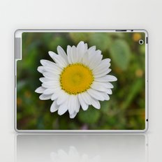 Daisy, Pure & Simple Laptop & iPad Skin