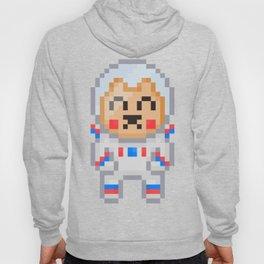 8Bit Astrobear Hoody