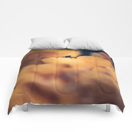 Disappear Comforters