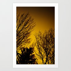 Fall Sunset Trees Art Print