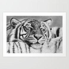 Tiger Pillow Art Print