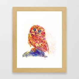 Caffeinated Owl Framed Art Print