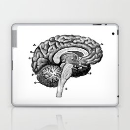 Brain 2 Laptop & iPad Skin
