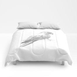 Sun Conure Comforters