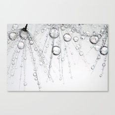 Chainmail Dandy Drops Canvas Print