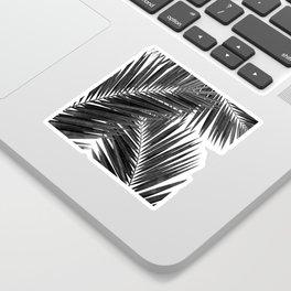 Palm Leaf Black & White III Sticker