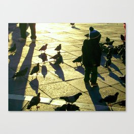Boy with Pigeons, San Marco Canvas Print