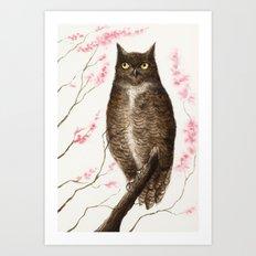 Spring Owl Art Print
