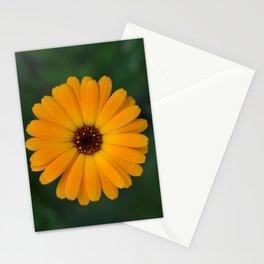 Marigold flower 4 Stationery Cards