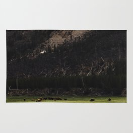 Buffalo in the Meadow Rug