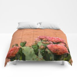 Cacti in Bloom - 5 Comforters