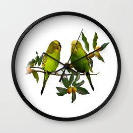 Budgies in Kumquat Tree Wall Clock