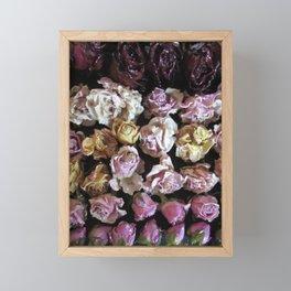 Rose Love 3 Framed Mini Art Print