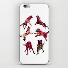 perros iPhone & iPod Skin