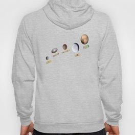 Dwarf Planets 2 Hoody