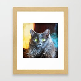 Fluffy grey cat close-up | You had me at meow Framed Art Print