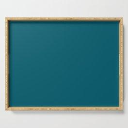 Best Seller Sherwin Williams Trending Colors of 2019 Oceanside (Dark Aqua Blue) SW 6496 Solid Color Serving Tray
